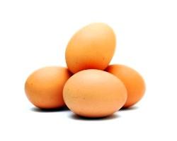 Білок курячого яйця, властивості