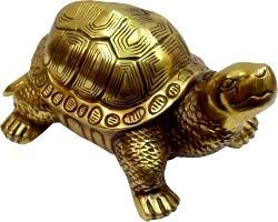 Що значить черепаха по фен-шуй