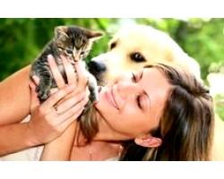 Домашні тварини - шкода здоров
