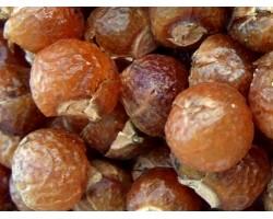 Індійські мильні горіхи