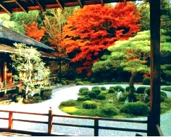 Японський сад своїми руками