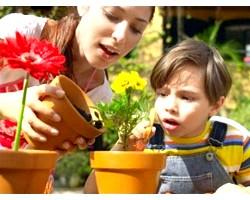 Кімнатні рослини в дитячій малюка