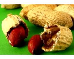 Лікувальні властивості, арахісове масло
