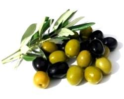 Оливки й маслини: лікувальні властивості