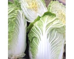 Корисні властивості пекінської капусти