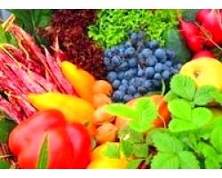 Користь ягід овочів фруктів