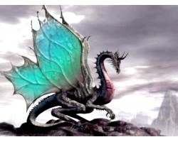 Символ чорний дракон