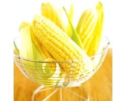 Солодка кукурудза: корисні властивості
